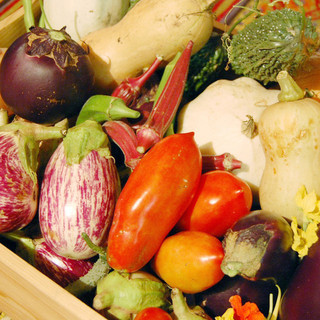 契約農家から仕入れた無農薬野菜を使用したこだわりの料理