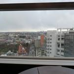Karin - 武蔵野の風景。生憎の曇り空