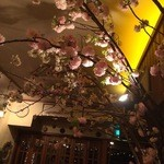 AUREOLE - 店内の桜(八重桜)