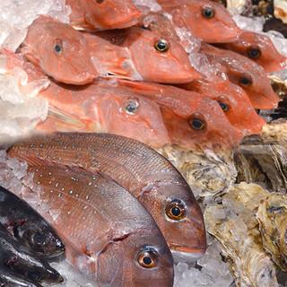 新鮮な魚介を使用したお料理多数!