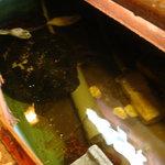 魚処 苫屋 - 秘密の食材の宝庫♪海老と亀が写ってますよ。