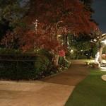 横浜うかい亭 - 夜の庭園 (2015-4)
