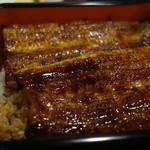 36800714 - 愛知県一色産鰻