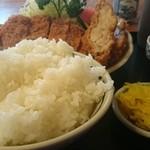 嵯峨野 - 2015.4普通の定食です