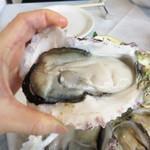オイスタールーム 梅田ハービスエント店 - 岩牡蠣は3年ものだったでしょうか。                             一口で食べると、口の中に海が溢れます。