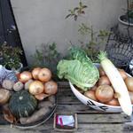 ベラフィリア - テラスの横に並ぶ無農薬野菜