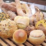 麦音  - ハード系パンが充実しました