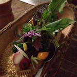 六本木農園 - 看板メニューの農園サラダ