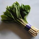 37033312 - 春の山菜「あずき菜」