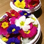ナチュラル サプリ - 食べれるお花エディブルフラワー