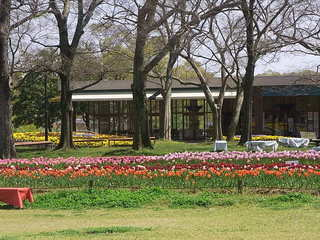 パークカフェ - 反対側は花の丘☆♪