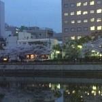 37076852 - 対岸の桜