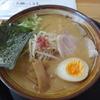さくら はる食堂 - 料理写真:はる味噌ラーメン(500円)