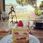 37113946 - ショートケーキ