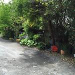 デイ バイ デイ Ⅱ - 駐車場からの入口