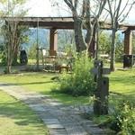 37141719 - お庭は綺麗