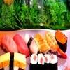 Nishikizushi - 料理写真:お任せ握り
