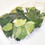 シーワント - コブミカンの葉