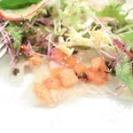 サポーレ エッレ - 前菜:平目のカルパッチョ仕立て トマトと黒オリーブのソース ニンニク風味 (1836円) '15 3月上旬