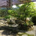 山茶花 - 座敷から見える庭