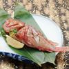 [日替り]本日の鮮魚焼き