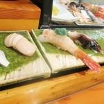 魚道 - こはだ、帆立、ボタンエビ、とり貝☆