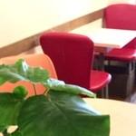 Fruit Cafe Saita!Saita! - 明るい色使いの椅子が並びます