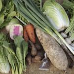BISTRO THE FARM - 農家直結の無農薬野菜