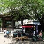 37482534 - 太麺やきそば まことや 蓮馨寺(れんけいじ)店