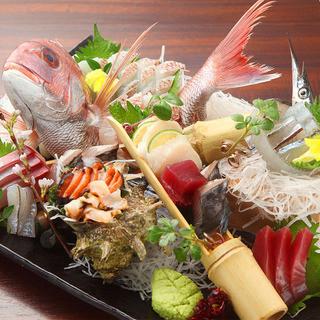 産地直送の鮮魚をご提供致します!