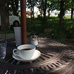 オテッサ - 料理写真:木陰のテラス席でゆったり