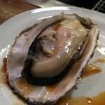 37628580 - アツアツ、ふっくら、プリプリの美味しい牡蠣です(><)@2015/5/4