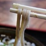 秘伝越前流手うちそば 池田のそば すいこう - 麺はこんな感じ