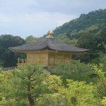 金閣寺不動釜茶所 - 頂上からの金閣寺