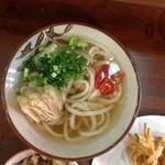 讃岐うどん河野 - 2015-05-08 イリコご飯、野菜天