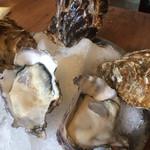 かき小屋 - サービスで出された生牡蠣