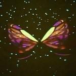 プラネタリウム スターリー カフェ - 3DCGバタフライ①(12分/素晴らしい映像です)