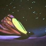 プラネタリウム スターリー カフェ - 3DCGバタフライ③