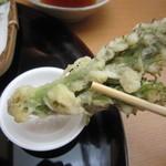 蕎麦 ひびき庵 - 「たらの芽」を塩で