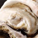 日本酒バル 方舟プラチナ  - 夏の風物詩 天然岩牡蠣