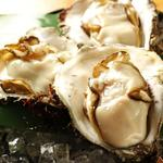 日本酒バル 方舟プラチナ  - 岩牡蠣