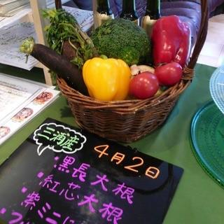 【新鮮野菜】大切な生産者様の新鮮な食材を厳選