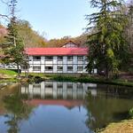 鯉川温泉旅館 - 宿の前に大きな池があります