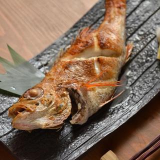 常にある高級魚の塩焼き今日はのどぐろ