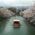 38018486 - 店舗前の疏水に浮かぶ観光船。春限定です。