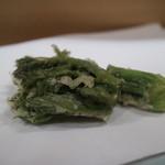 清壽 - 天然のたらの芽