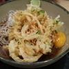 名代 箱根そば - 料理写真:冷やし天玉そば