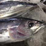 越知町観光物産館 おち駅 - JAから朝入荷した魚たち。火曜金曜に売ってます!