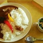 富士山こどもの国 - 街のレストラン@富士山こどもの国 秋野菜のオリジナルカレー・大盛