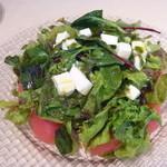 オステリア ハミングバード - カプリ風サラダ(788円)バジルソースとトマトとモッツァレラチーズの相性が良いです